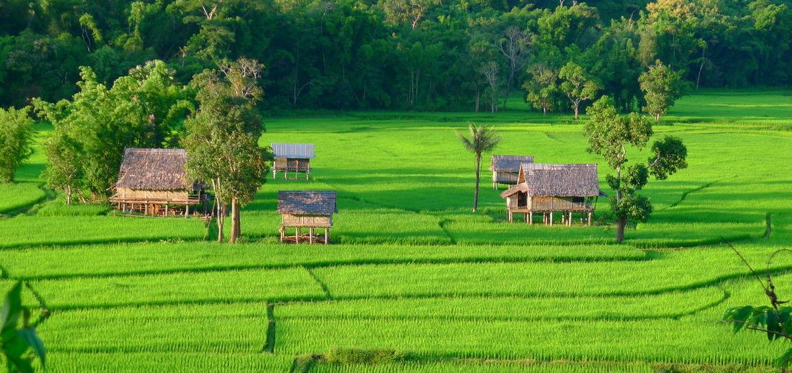 Muang La, Laos