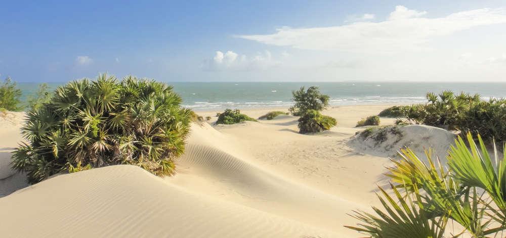 Dunes de Shela