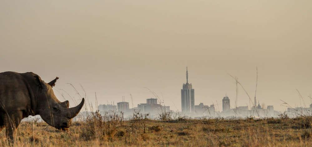 Parc National de Nairobi