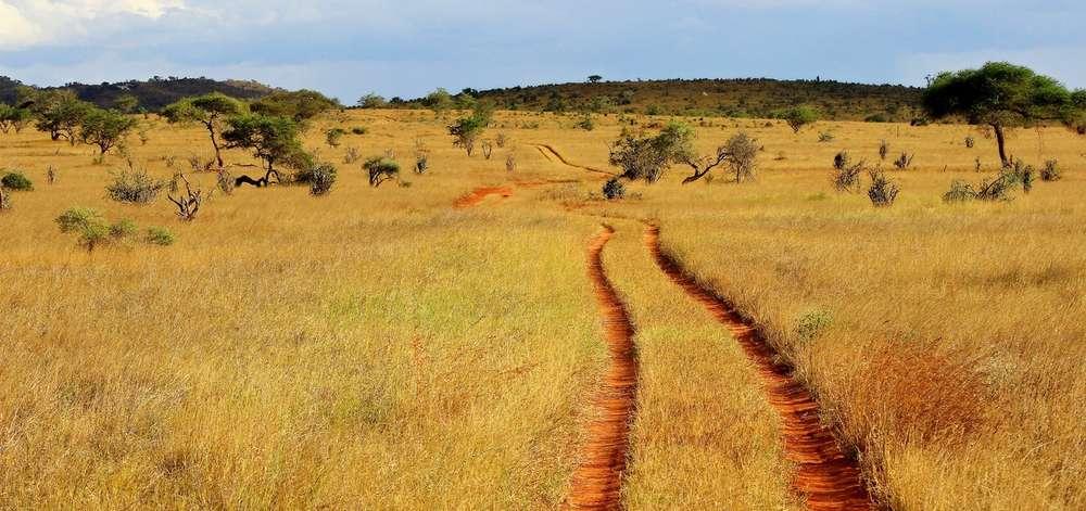 Piste du Masaï Mara