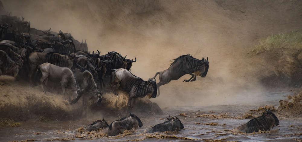 Traversée de la Mara River