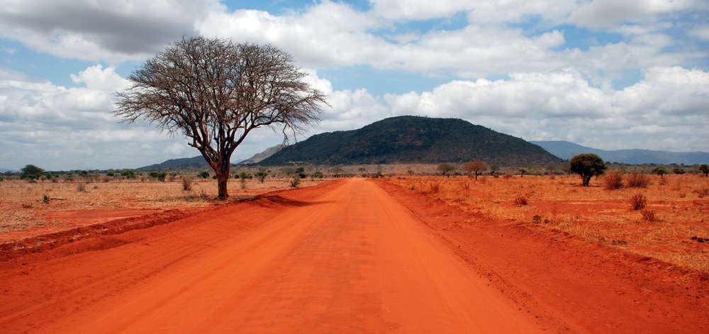 Piste du Parc National de Tsavo