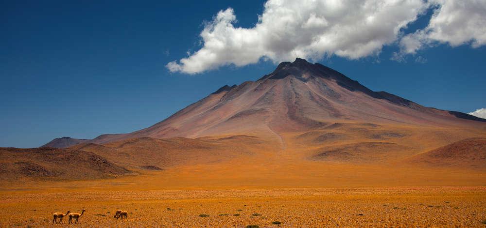 Volcan de l'Atacama