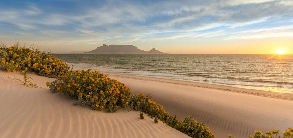 Région du Cap